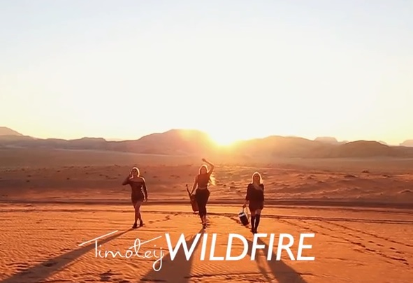 wildfire_video